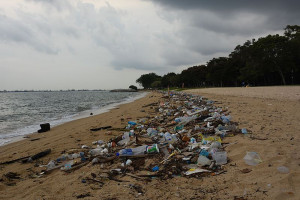 Plastic litter on Singapore coast