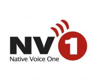 nv1_logo_